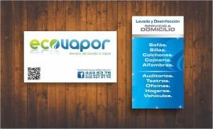Ecovapor
